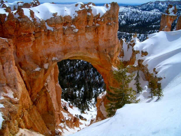 Bryce_Canyon_Natural_Bridge