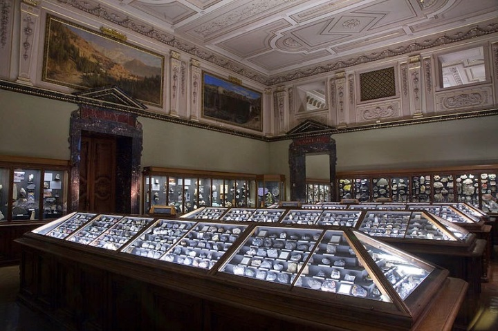312a7-natural_history_museum_
