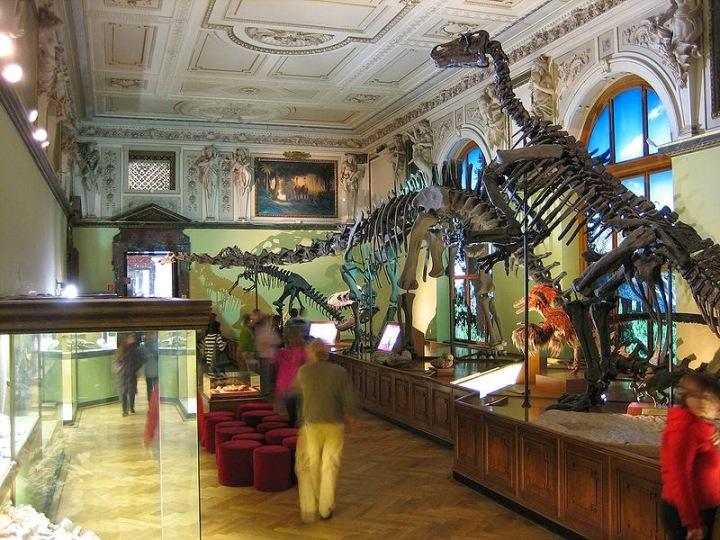 68428-naturhistorisches_museum_dinosaurierabteilung
