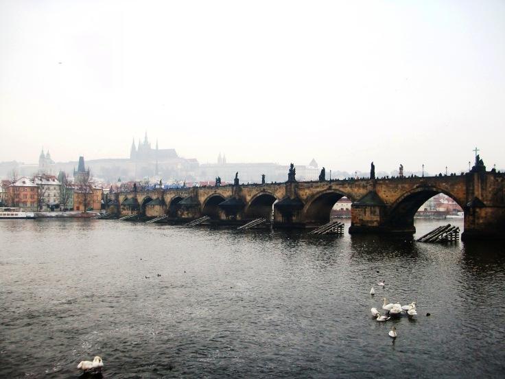 Praga (11)