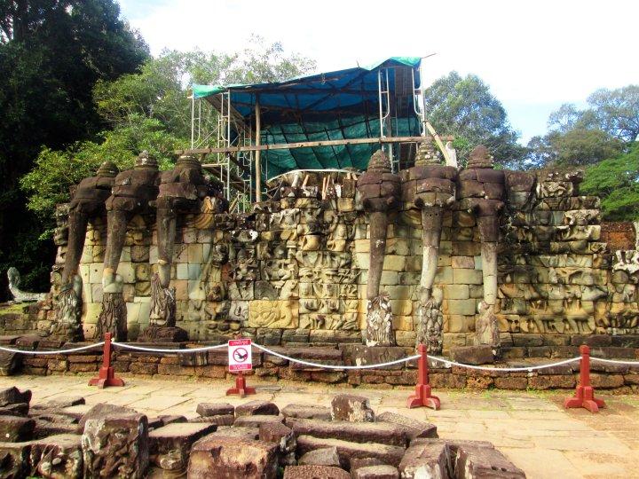 terraco-elefantes-2