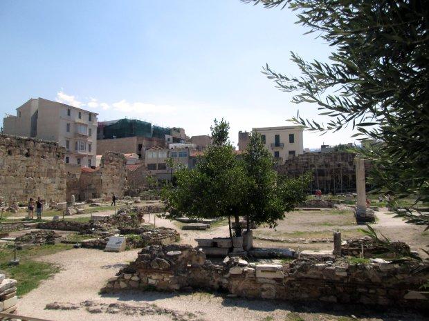 Athena - Biblioteka.JPG